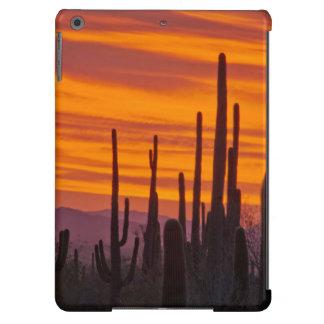 Saguaro, sunset, Saguaro National Park iPad Air Case