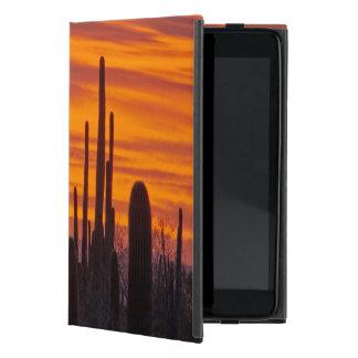 Saguaro, sunset, Saguaro National Park iPad Mini Cases