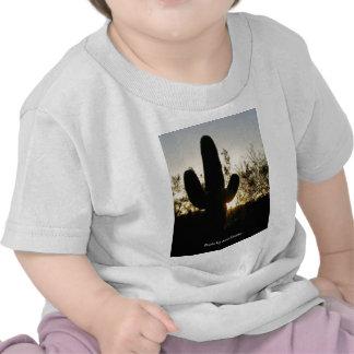 Saguaro Sunset T Shirt