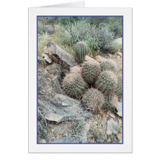 Saguaro Swirl Greeting Card