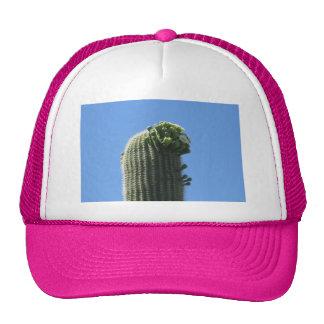 Saguaro Top Flowering Buds Trucker Hat