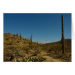 Saguaro's Carillo Trail in Saguaro National Park Card