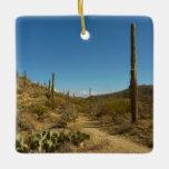Saguaro's Carillo Trail in Saguaro National Park Ceramic Ornament
