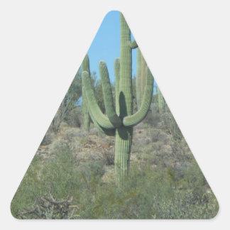 Saguaros Pegatina Triangular