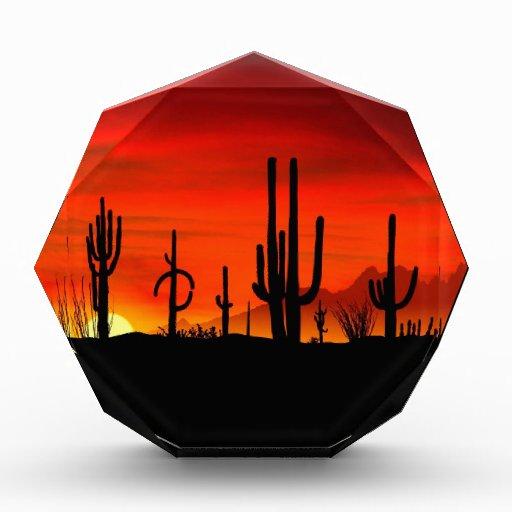 Saguaros Sonoran Arizona de los desiertos