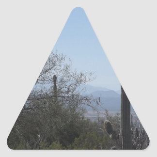 Saguaros With a View Triangle Sticker