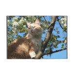 Sahara Cat In A Tree iPad  Mini Case Cover For iPad Mini