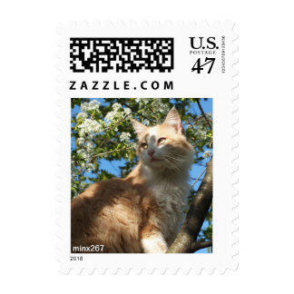 Sahara Cat In A Tree Postage Stamps