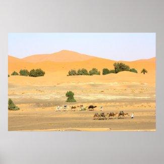 Sahara Desert - Camels and Erg Chebbi Print