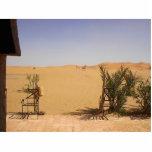 Sáhara Esculturas Fotográficas