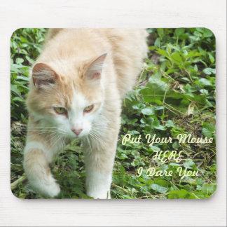 Sahara Jungle Cat Mouse Pad