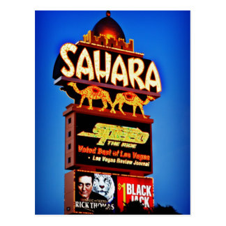 Sahara Sign Postcard