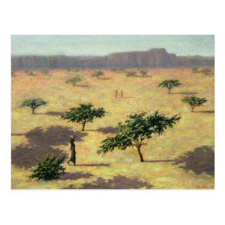 Sahelian Landscape Mali 1991 Postcard