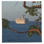 Sail Away at Sunset I Cruise Vacation Photography Napkin
