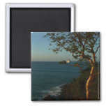 Sail Away at Sunset II Tropical Seascape Magnet