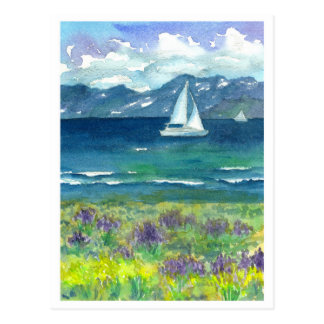 Sail Boat Mountain Lake Purple Watercolor Lupines Postcard