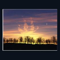 Sail the Night Sky Postcard