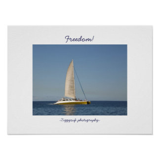 sailboat catamaran poster