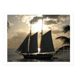 Sailboat in Sunset Postcard