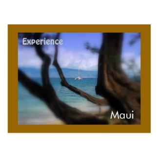 Sailboat, Kaanapali Beach, Maui Postcards