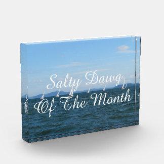 Sailboat Races Acrylic Award