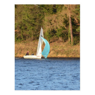 Sailboat Sailing Fast Postcard
