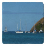 Sailboats in the Bay Trivet