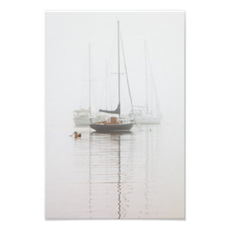 Sailboats in the mist photographic print