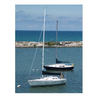 Sailboats on Lake Ontario Postcard