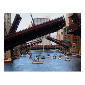 Sailboats on the Chicago River Postcard