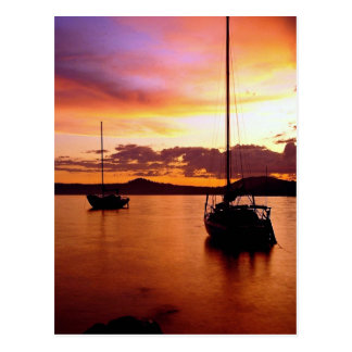 Sailboats on Waldo Lake, Willamette National Fores Postcard