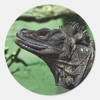Sailfin Lizard Portrait Classic Round Sticker