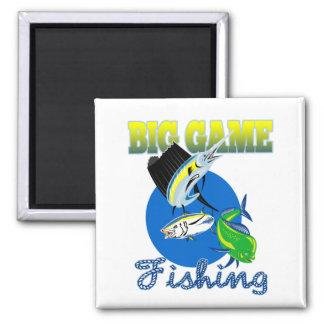 Sailfish dorado dolphin fish and bluefin tuna magnets