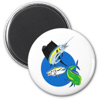 Sailfish dorado dolphin fish and bluefin tuna fridge magnets