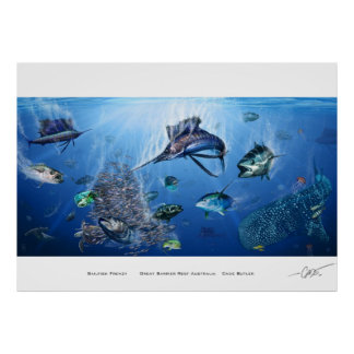 Sailfish Frenzy Poster