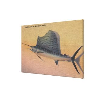 Sailfish from Gulf Stream FloridaFlorida Gallery Wrapped Canvas