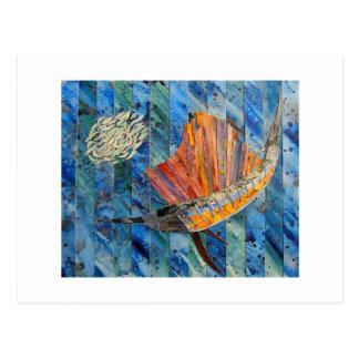 Sailfish Postcard