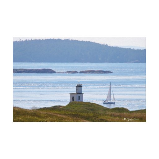 Sailing at Cattle Point, San Juan Island Stretched Canvas Prints