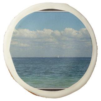 Sailing at the Skyway Sugar Cookie
