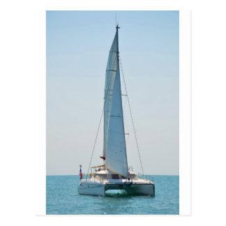Sailing Catamaran Clara Postcard