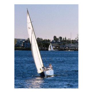 Sailing in San Diego Harbor Postcard