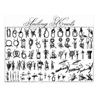Sailing Knots Postcard