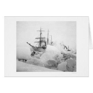 Sailing Ships Nome, Alaska 1904 Greeting Card