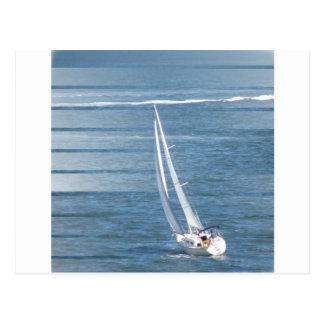 Sailing Wind Design Postcard
