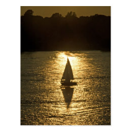 Sailing with a Shadow Postcard