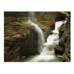 Sailor Canyon Falls Post Card