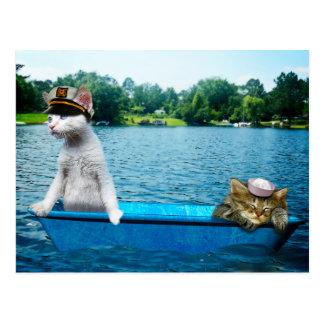 Sailor Cats Postcard