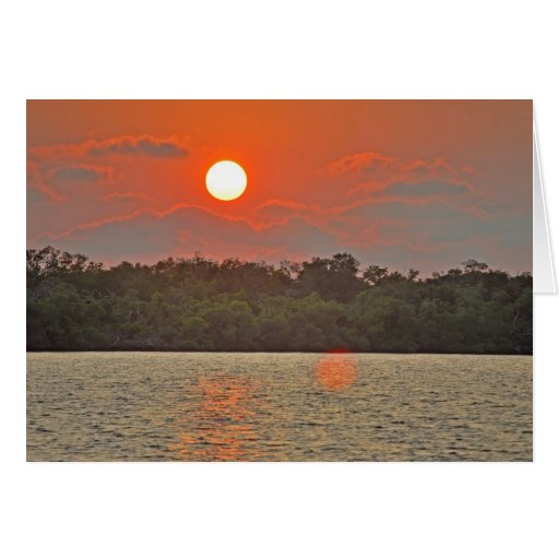 """""""Sailor's Delight """" collection Card"""