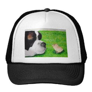 Saint Bernard and Baby Chick Trucker Hat