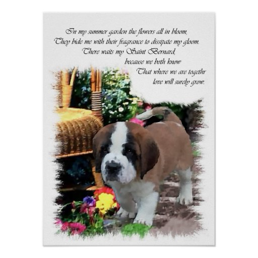 Shop for the perfect st bernard gift from our wide selection of designs, or create your own personalized gifts.